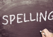 IN-Company Training Nederlands De Juiste Spelling